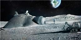 Con người có thể kết hôn, sinh con trên Mặt Trăng năm 2050