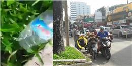 Clip ống hút nước dừa nghi bị tẩm chất lạ khiến cộng đồng mạng xôn xao