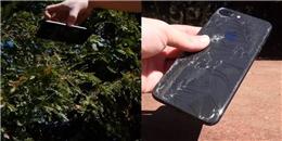 Thử nghiệm đánh rơi iPhone 8 plus, kết quả vỡ tan tành cả mặt trước lẫn mặt sau