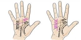 5 đường chỉ tay quan trọng và ý nghĩa sẽ cho bạn biết nhiều điều cực thú vị về cuộc đời mình