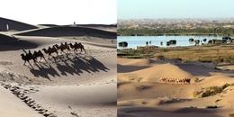 Sa mạc Kubuqi: Từ những cồn cát cằn cỗi đến thiên đường quyến rũ