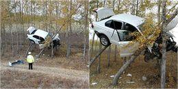 """Hiện trường vụ tai nạn có 1-0-2: Chiếc xe hơi nằm """"vắt vẻo"""" trên thân cây cao"""