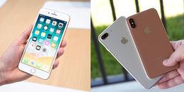 iPhone 8 ế chổng chơ, iPhone 7 lại cháy hàng xình xịch