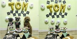 Nhìn tiệc sinh nhật hoành tráng của Boss mà ngậm ngùi cho thân phận Sen quá đi này!