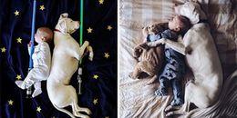 Tan chảy trước loạt ảnh 'giấc ngủ yên bình' giữa em bé và chú chó từng bị bạo hành
