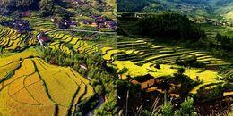 Ngắm ruộng bậc thang ở Trung Quốc đẹp như tranh vẽ qua ống kính flycam