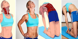 Cực hay cho dân Gym đây: 'Phiên bản tả thực' hình ảnh các nhóm cơ bị kéo căng khi tập