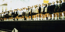 Văn hóa tự tử tập thể đáng sợ: Góc khuất đen tối của xã hội Nhật Bản