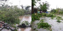 Cảnh báo bão số 14 tiếp tục mạnh lên, tiến thẳng vào Khánh Hòa - Bình Thuận
