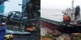 Vì sao hậu quả bão Damrey đặc biệt nghiêm trọng