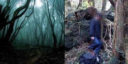 Rùng mình trước 'khu rừng tự sát' Aokigahara chỉ có ở Nhật Bản