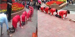 Chỉ vì không đạt doanh thu, quản lý bắt 20 nhân viên nữ phải quỳ xuống bò xung quanh TTTM
