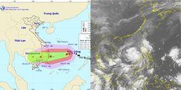 Cơn bão số 12 mạnh lên, mưa lớn từ Quảng Trị đến Bình Thuận
