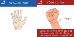 Xem sức khỏe và tuổi thọ chỉ bằng bàn tay