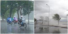 Bão số 13 - Haikui đã chính thức suy yếu thành áp thấp nhiệt đới