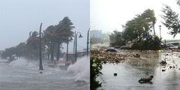 Thủ tướng ra công điện chỉ đạo khẩn cấp ứng phó với bão số 14