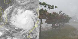 Trung ương nâng mức độ ảnh hưởng cơn bão số 12 đổ vào Nam Trung Bộ lên cấp độ 4, chỉ sau thảm họa