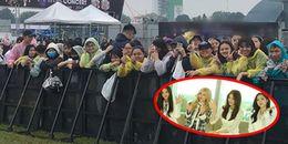 Bất chấp mưa gió, fan T-ara đã có mặt từ sớm để chuẩn bị 'quẩy' hết mình cho đêm concert