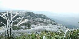 Lạnh -2 độ C, Cao Bằng đã xuất hiện băng giá trắng xoá