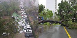 Thành phố biển Nha Trang tan hoang sau bão số 12: Đã 20 năm mới phải chịu hậu quả nặng nề đến thế