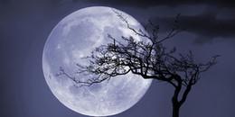 Đón hai siêu trăng trong tháng đầu năm mới