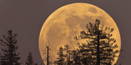 Siêu trăng bự chảng cuối cùng của năm 2017 sẽ 'lên sóng' vào cuối tuần này, đừng bỏ lỡ!