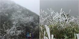 Sáng nay Fansipan bất ngờ xảy ra 2 trận mưa tuyết liên tiếp, đỉnh núi phủ một màu trắng huyền ảo