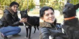 Cảm động chú chó bị xe ô tô đâm đã đi suốt 200 cây số để tìm về với ân nhân cứu mạng mình