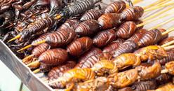 Có thể bạn không muốn nhưng trong tương lai côn trùng sẽ là nguồn thực phẩm chính
