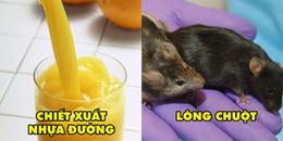 Chẳng ai ngờ rằng chúng ta đã từng ăn 9 loại thức ăn kinh dị này