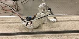 """Robot """"sơ sinh"""" khiến con người phải khiếp sợ vì 'bò qua bò lại' trên sàn"""