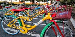 Ông lớn công nghệ Google đau đầu khi đối phó với nạn mất...xe đạp
