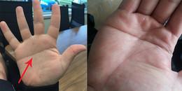 'Bàn tay chữ nhất' và những bí ẩn đặc biệt ít người biết đến