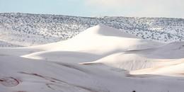Đây là lần thứ ba trong vòng 37 năm, sa mạc Sahara bị lớp tuyết dày gần 40cm bao phủ trắng xóa