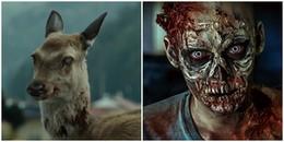 Dịch bệnh đáng sợ biến hươu thành Zombie ở Mỹ, các chuyên gia lo ngại nó có thể lây lan sang người