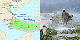 Sài Gòn lên phương án chống cơn bão Sanba trước những ngày giáp Tết nguyên Đán 2018