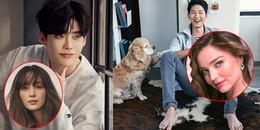 Bạn đã biết mĩ nhân nào là người tình trong mộng của loạt nam thần đình đám xứ Hàn này?