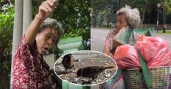 Có 1 Sài Gòn dễ thương thế này đây: Bà cụ nuôi chim trời và cho thú hoang ăn hơn chục năm