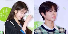 Dự lễ ra mắt phim nhưng IU - Park Bo Gum tỏa sáng đến nỗi khán giả quên luôn diễn viên chính là ai