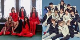 Không phải BTS hay EXO, hai nhóm này mới được các chuyên gia chọn là Nghệ sĩ của năm
