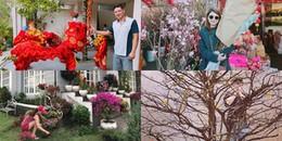 yan.vn - tin sao, ngôi sao - Sao Việt nô nức trang hoàng nhà cửa lung linh đón Tết 2018