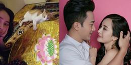 Từng khẳng định 'có rảnh cũng không về nhà', Dương Mịch thực sự đón Tết như người độc thân?