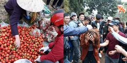 Ảnh: Độc đáo phiên chợ ném cà chua một năm chỉ họp một lần ở Thanh Hóa