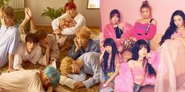 yan.vn - tin sao, ngôi sao - Giải thưởng âm nhạc hàn lâm danh giá nhất Hàn Quốc: BTS có nguy cơ trượt mất Daesang vì hai idol này