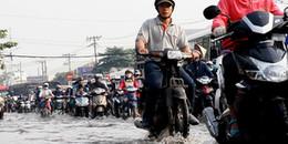 Ngày đầu triều cường đạt đỉnh, người Sài Gòn đã 'ngụp lội' trong các tuyến đường