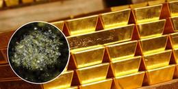 """Phát hiện vi khuẩn """"cực ngầu"""": Ăn kim loại độc hại để nhả ra... vàng"""