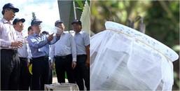 Bạn biết gì chưa, hơn 30.000 con muỗi vừa được thả tại Nha Trang đấy, nhưng để làm gì thế nhỉ?