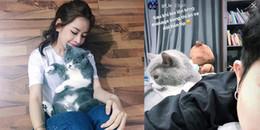 yan.vn - tin sao, ngôi sao - Bị nghi đăng ảnh thú cưng để nhớ nhung Gil Lê, Chi Pu đáp trả gay gắt thế này