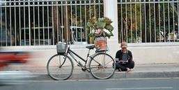 Chuyện hai anh em vừa học bài, vừa bán hoa sen mưu sinh giữa cái nắng gay gắt của Sài Gòn