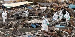 Toàn cảnh vụ nam thực tập sinh người Việt, 'bị lừa' đi dọn dẹp tại khu vực nhiễm phóng xạ Fukushima